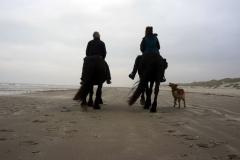 op-strand-Terschelling