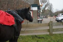 tocht-paarden-Terschelling-6