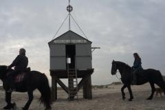 vakantie-te-paard-1