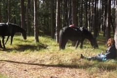 vakantie-te-paard-6