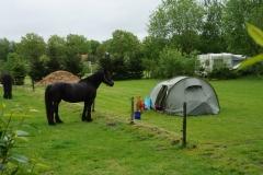 23-mei-boerencamping-