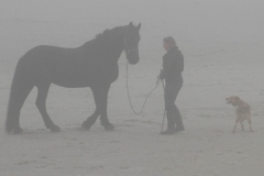 foto-mist-Terschelling